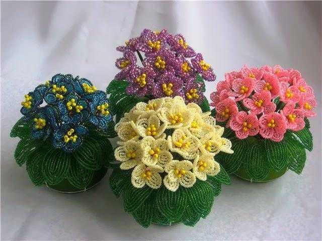 Цветовым разнообразием поражает такой цветок