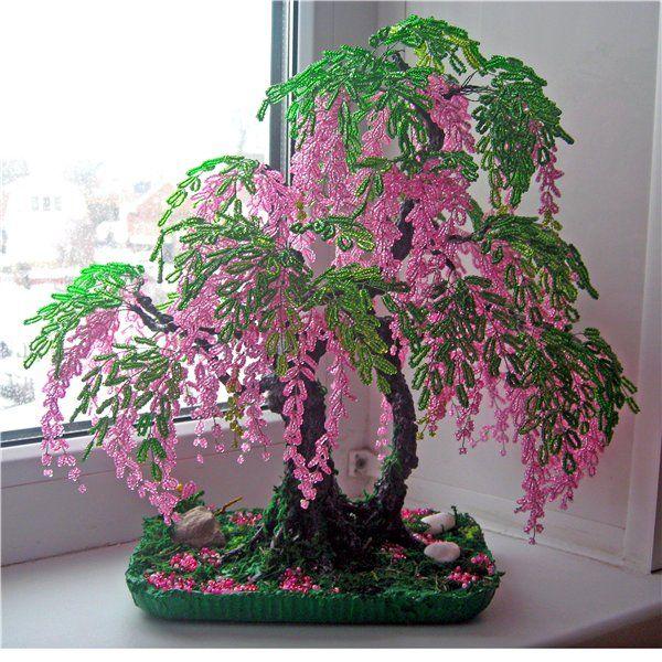 Глициния-красивое вьющееся растение