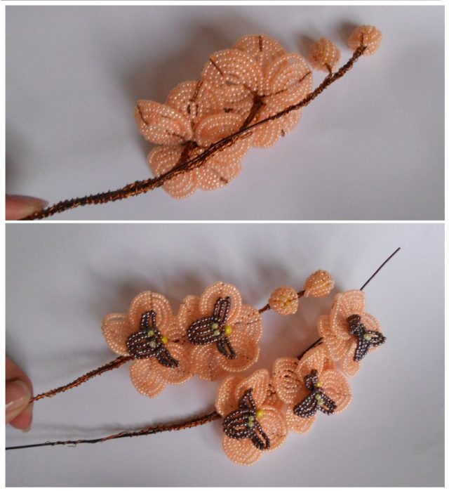 Сборка орхидеи