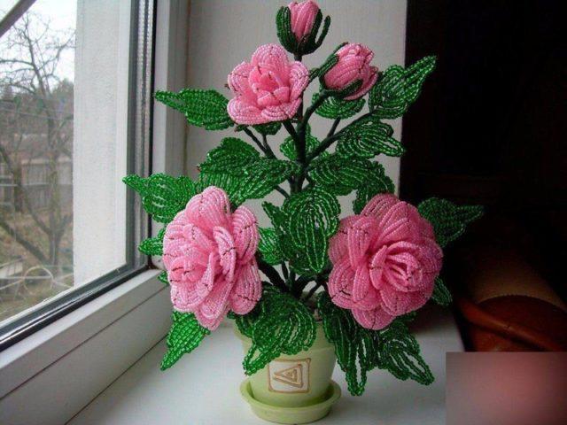Фиксация розы в горшке