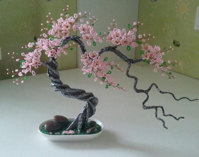 Сакура очень красивое дерево