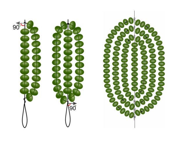 Плетение округлого листика