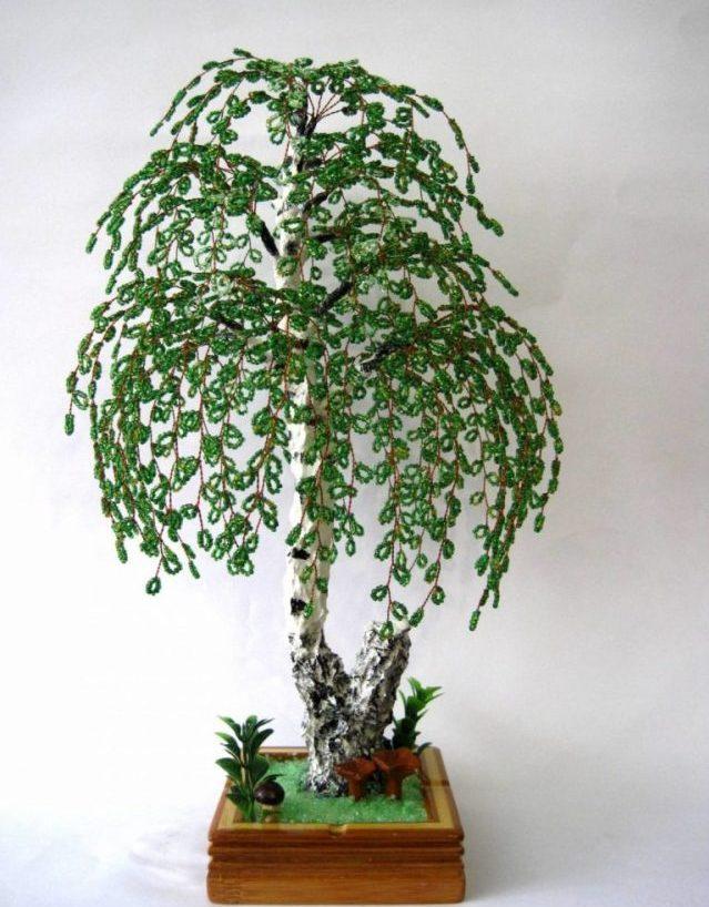 Дерево береза