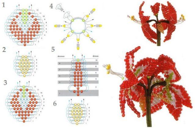 Амариллис параллельным плетением