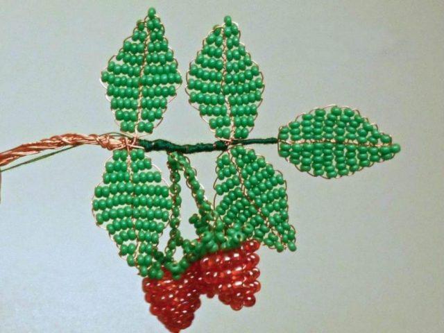 Веточка малины с листьями