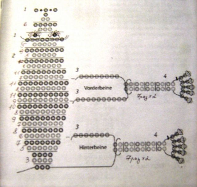 Схема плетения лягушки из бисера
